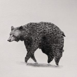 Hurd_Caitlin_Fat Bear Float Left_ink on paper